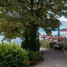 Vierwaldstätter See mit dem Fahrrad, Tellsplatte