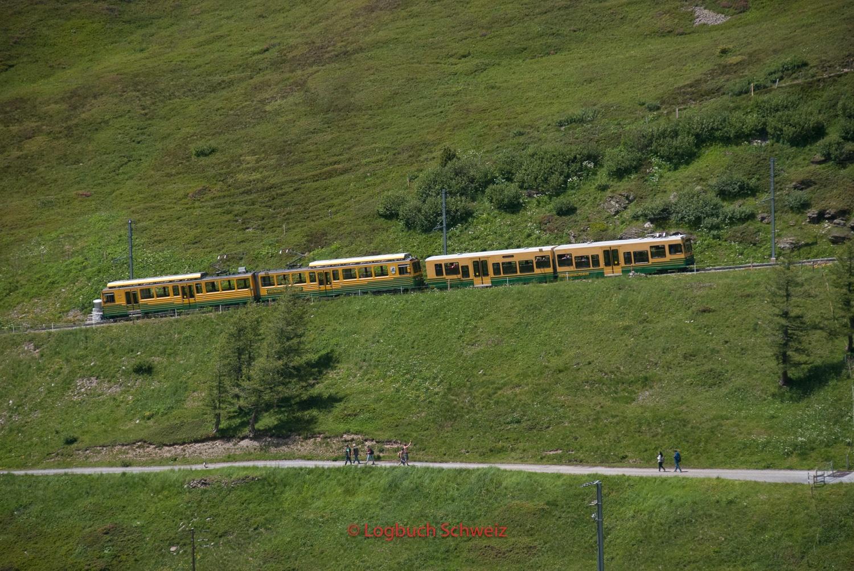 Jungfraujoch Wengeneralp Bahn