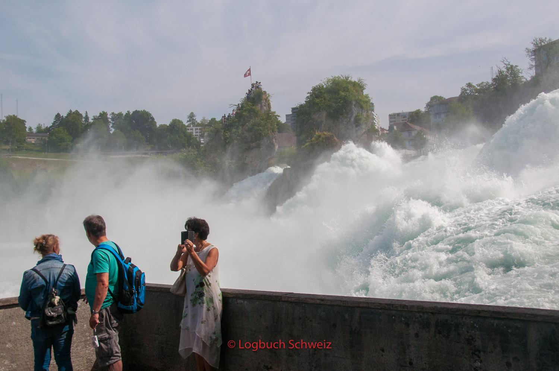 Schaffhausen Rheinfall Eintritt