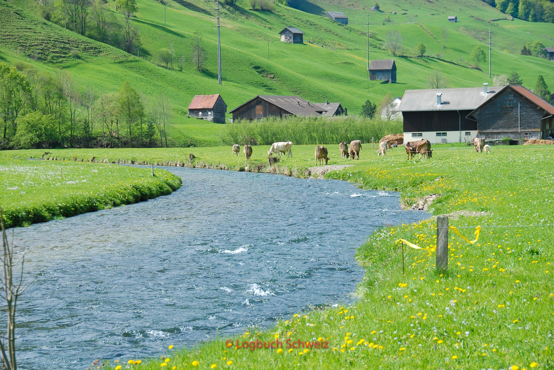 Fluß Thur Radtour