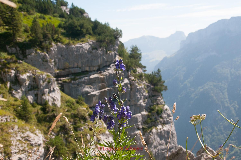 Alpstein, Ebenalp