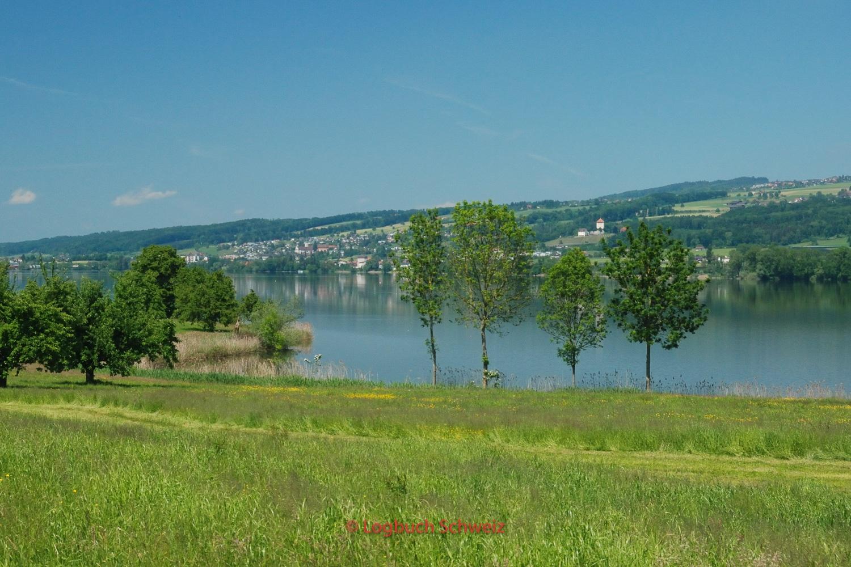 Baldegger See