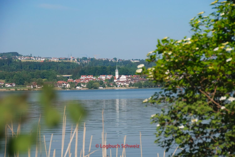 Sempacher See, Sempach